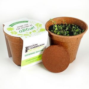 Wildflower Seed Paper Sprouter Kit